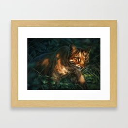 Golden Cat Framed Art Print
