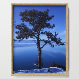 Pine Tree silhouette on Blue Serving Tray