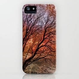 Mad colors of Autumn iPhone Case