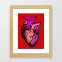 Valentine Anatomy Heart Framed Art Print