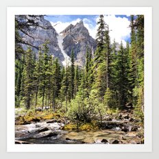 Mountain Ravine Art Print