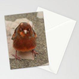 Cute runaway canary bird Stationery Cards