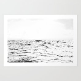 WHITE - SEA - WAVES - WATER - WHALE - NATURE - ANIMAL - PHOTOGRAPHY Art Print