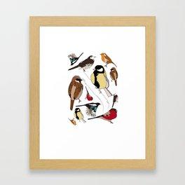 Some Birds Framed Art Print