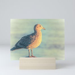 Bird Mini Art Print