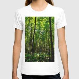 Green breeze T-shirt