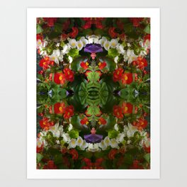 Flowers reflections on the double. Art Print