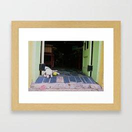 Guard Dog Framed Art Print