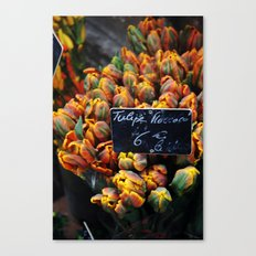 French Blooms Canvas Print