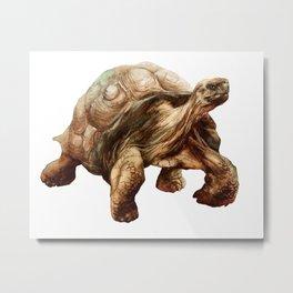 Tortoise Tiptoes Metal Print