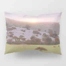 Spring Mood II Pillow Sham