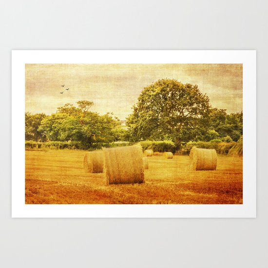 A day in the countryside Art Print
