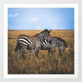 Masai Zebra Art Print