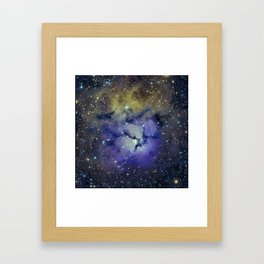 Pansy in Space Framed Art Print