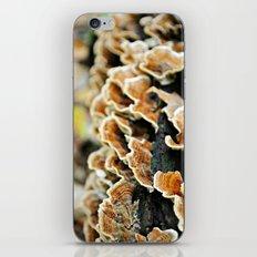 Layer Upon Layer iPhone & iPod Skin