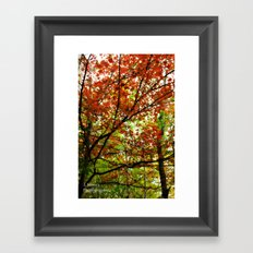 Chilly Moments Framed Art Print