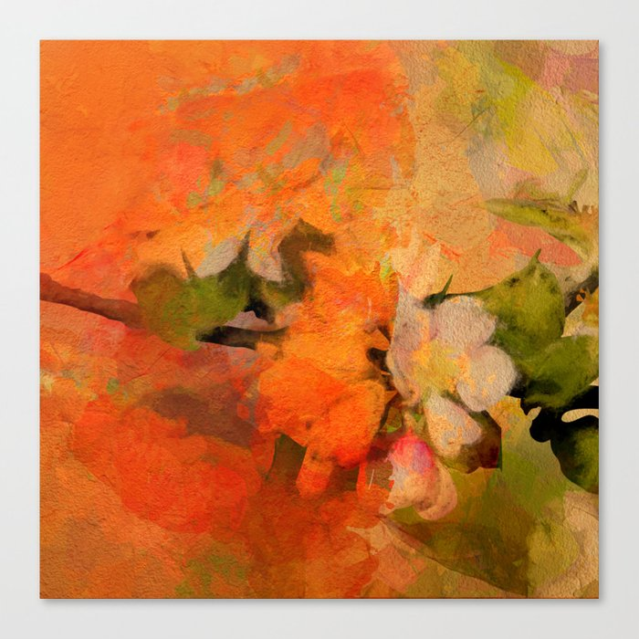 Orange blossom Canvas Print