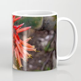 Cactus-Wrapped Flaming Firecraker Flower Coffee Mug
