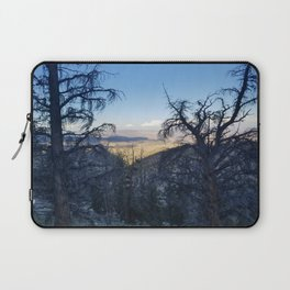 Ancient Bristlecone Pine Forest #1 Laptop Sleeve
