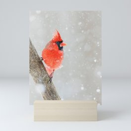 Male Northern Cardinal Mini Art Print