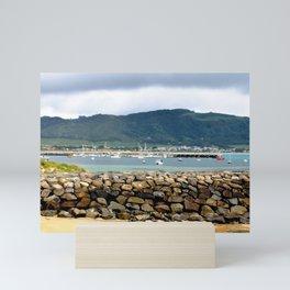 Apollo Bay Victoria Mini Art Print