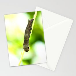 Caterpillar On A Green Plant #decor #society6 Stationery Cards