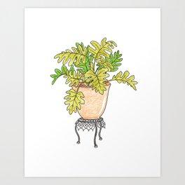Philodendron Houseplant Art Print