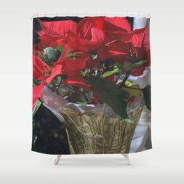 Poinsettia - Euphorbia pulcherrima Shower Curtain