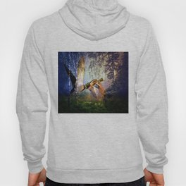 Ducks Flying To The Lake By Annie Zeno Hoody