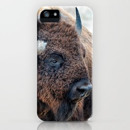OLena Art Bison the Mighty Beast - Bison das mächtige Tier North American Wildlife iPhone Case