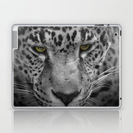 An Intense Stare - Wildlife - Leopard Laptop & iPad Skin