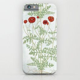 A reminder of past poppies iPhone Case