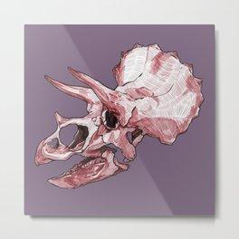 Triceratops - Dinosaur Fossil Skull Metal Print