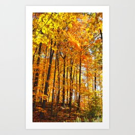 Autumn Hillside Art Print
