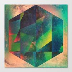 2 hyx Canvas Print