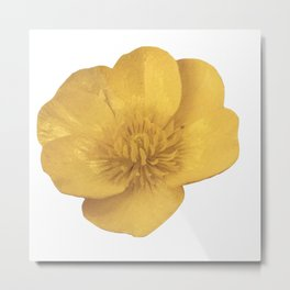 Buttercup Cutout Metal Print