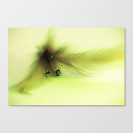 Soft Feather 1 Canvas Print