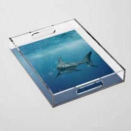 Great White Shark Acrylic Tray