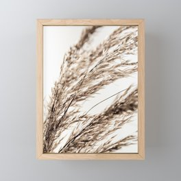 Grass 14 Framed Mini Art Print