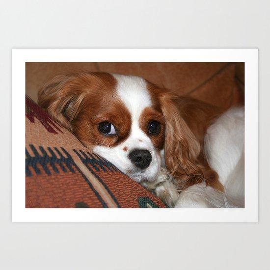 The Pup Art Print