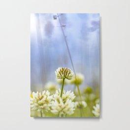 Glover flower Metal Print