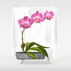 Watercolor Orchid Shower Curtain