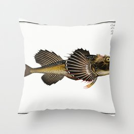 Horned Bull-Head (Cottus Quadricornis) from Ichtylogie ou Histoire naturelle generale et particulier Throw Pillow