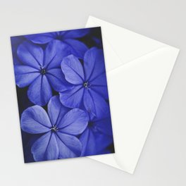 Purple/Blue Stationery Cards