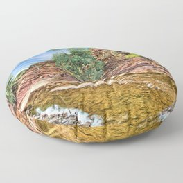 Rocks at Brachina Gorge, Flinders Ranges, Sth Australia Floor Pillow