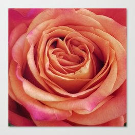 A Summer Bouquet 12 - orange rose Canvas Print