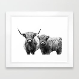 Highland Cattle - Perfect Pair Framed Art Print