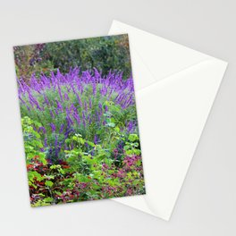 Purple Salvia In The Garden Stationery Cards