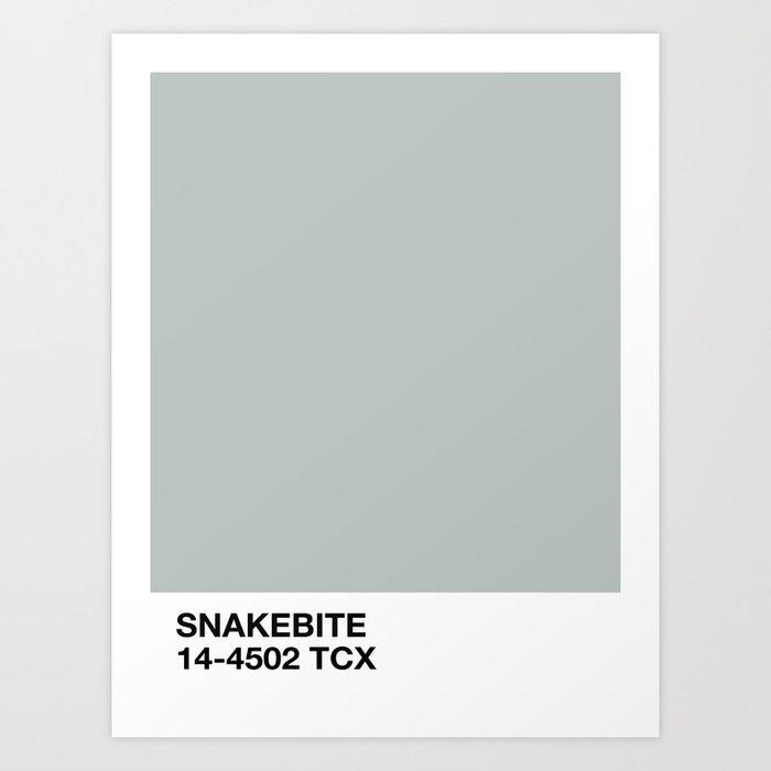 snakebite Kunstdrucke