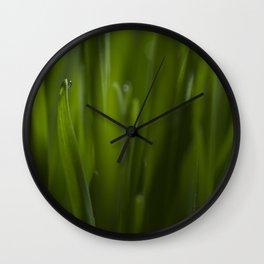Cat grass Wall Clock